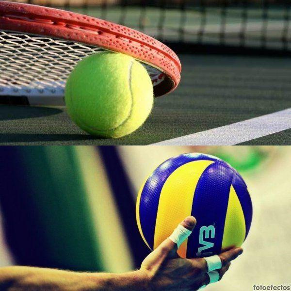 Tenis vs Voleibol