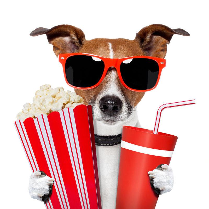 28648 - Encuesta sobre el comportamiento de la gente en el cine