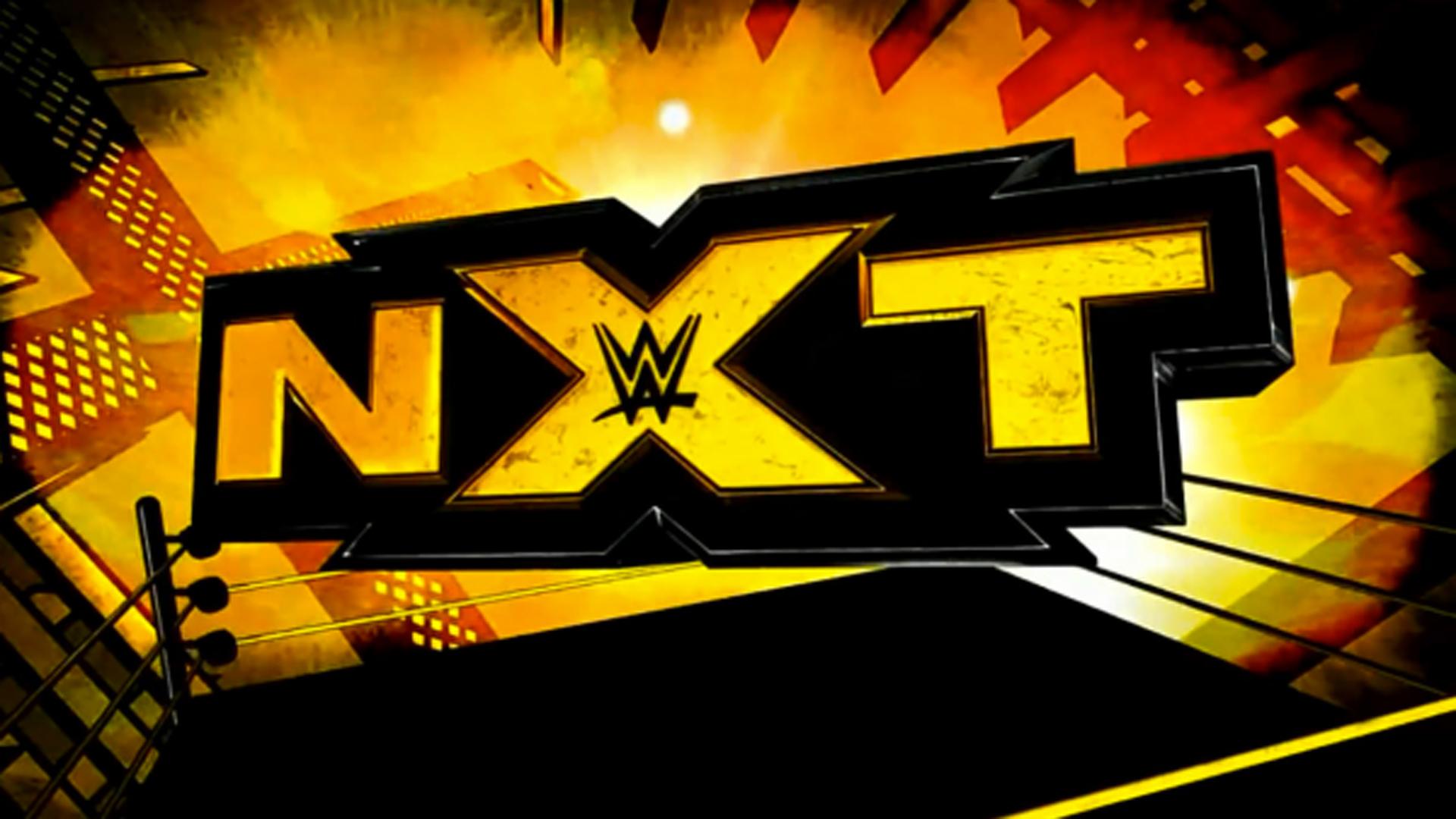 29395 - ¿Conoces a las super-estrellas de NXT?
