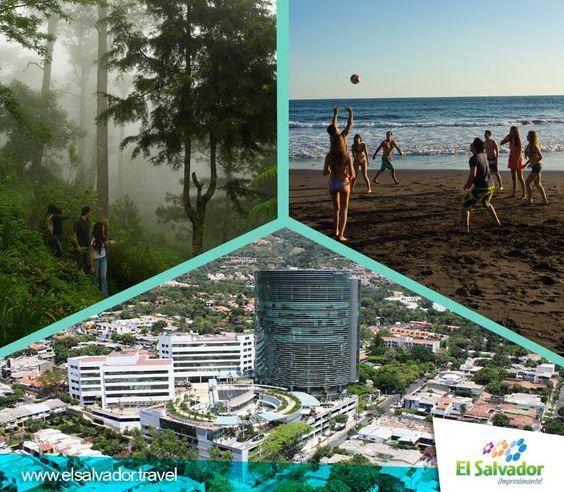 ¿Prefieres el mar, la gran ciudad o la montaña y las zonas rurales?
