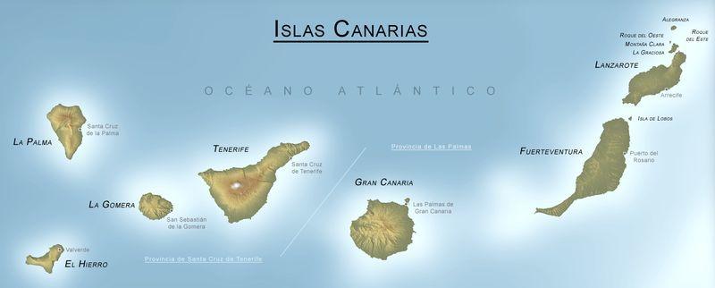 ¿De qué animal procede el nombre de las Islas Canarias?