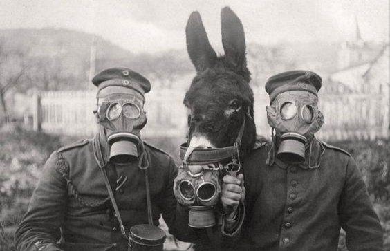 29839 - ¿Cuánto sabes de la Primera Guerra Mundial?