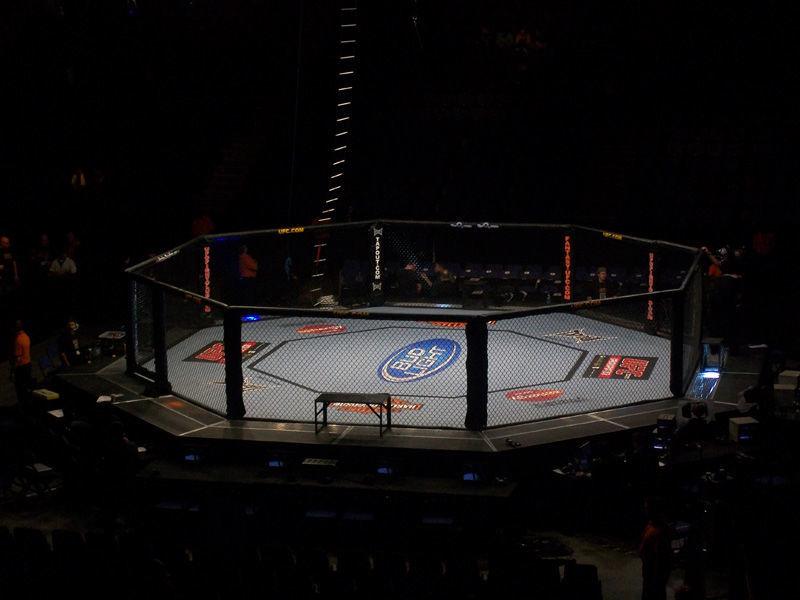 MMA (Artes Marciales Mixtas)