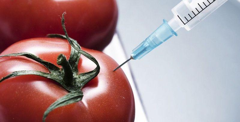 29996 - TEST: Ingeniería Genética, un tema cada vez más importante