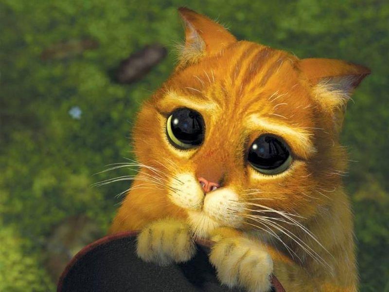 En la historia original de el gato con botas ¿la mascota que recibió el hijo del molinero era un gato?