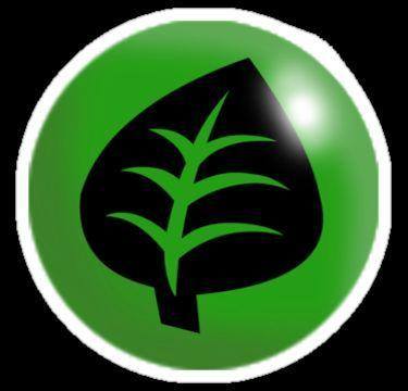 ¿Mejor inicial de tipo planta? (sin evolucionar)