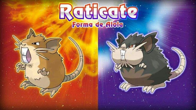 ¿Raticate normal o Raticate Alola?