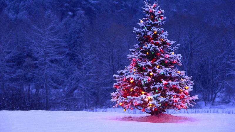 30670 - ¿Cómo son tus navidades?