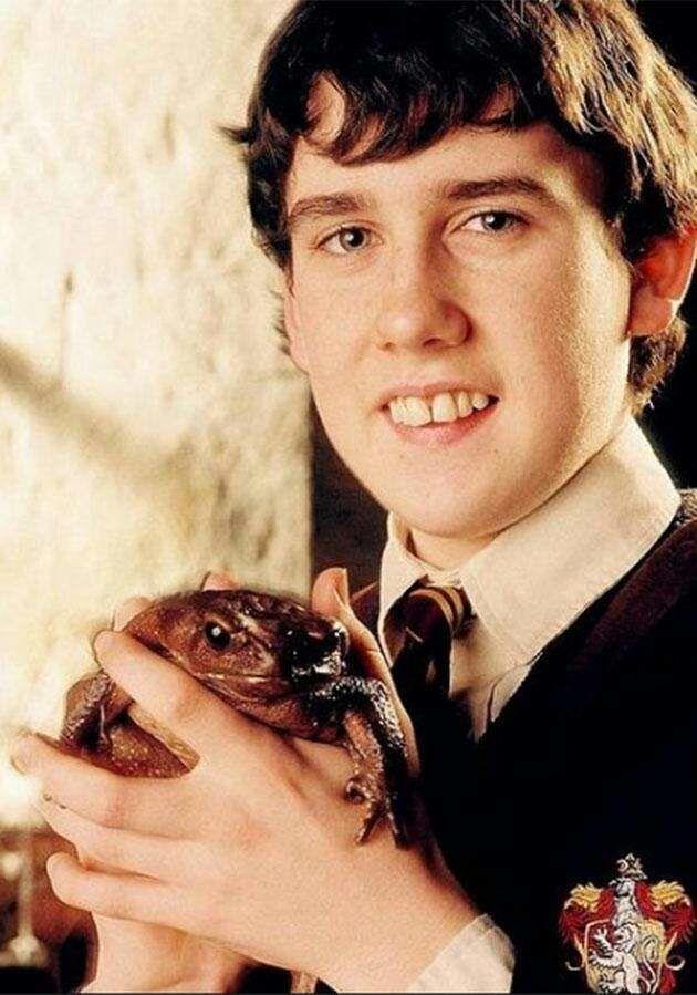 ¿Cuál era el nombre del sapo de Neville Longbottom ?
