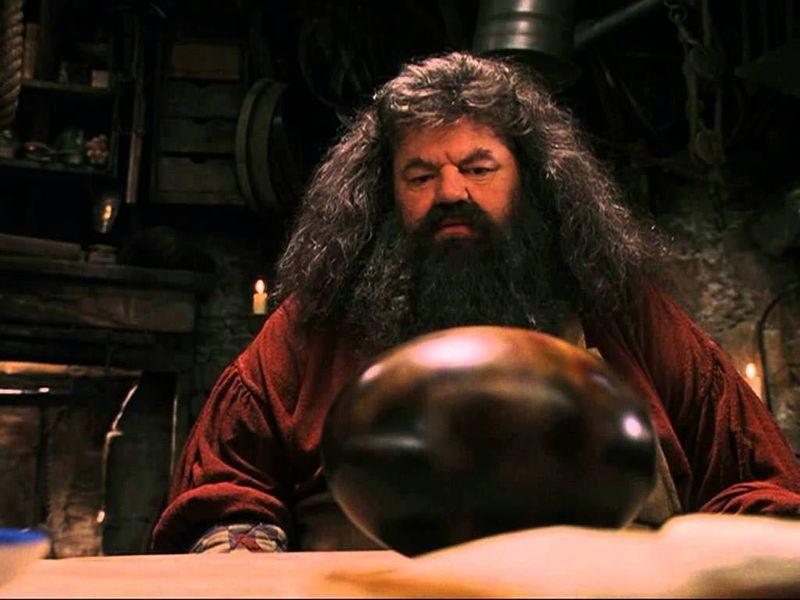 ¿De qué raza era el dragón de Hagrid?