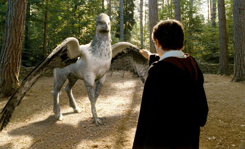 ¿Cómo se llamaba el hipogrifo de Hagrid?