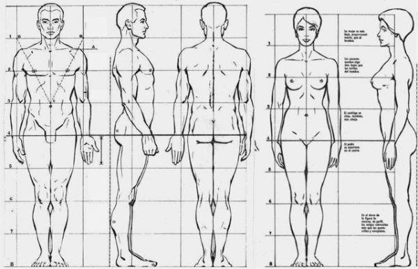 31544 - Test del atractivo físico