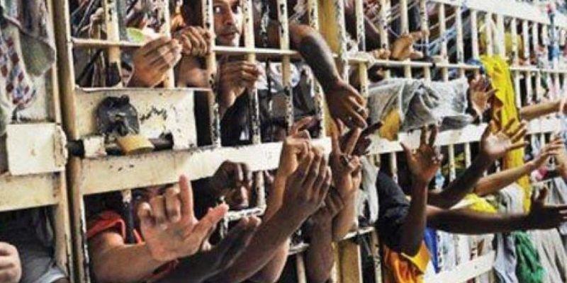 ¿Crees que las condiciones de vida de los reos están dentro del marco de los Derechos Humanos?