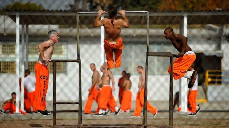 ¿Crees que deben mejorarse las medidas que eviten la violencia y los conflictos en las cárceles?
