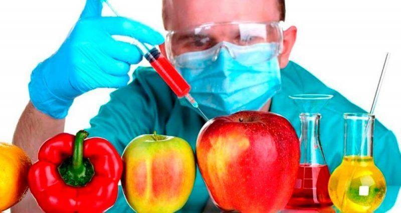 31700 - Organismos modificados genéticamente