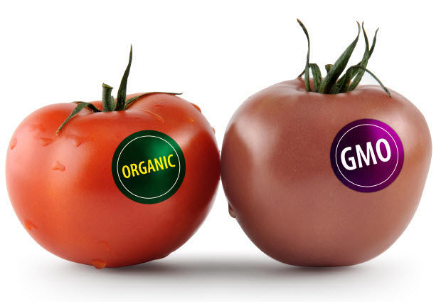 ¿Sabes qué significa que un alimento contenga OMG?