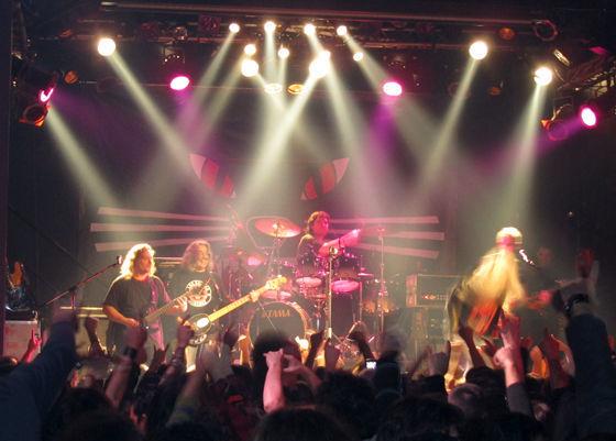 Que grupo de rock español de origen gallego tiene como logo de la banda la cara de un gato?