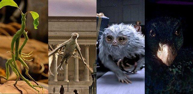 31773 - ¿Podrías asociar a estos animales fantásticos del universo de Harry Potter con su nombre?