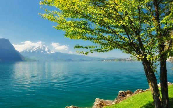 ¿Disfrutas de la naturaleza en tu tiempo libre?