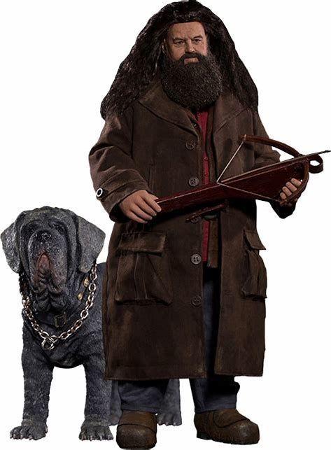¿Cómo se llama el perro de Hagrid?
