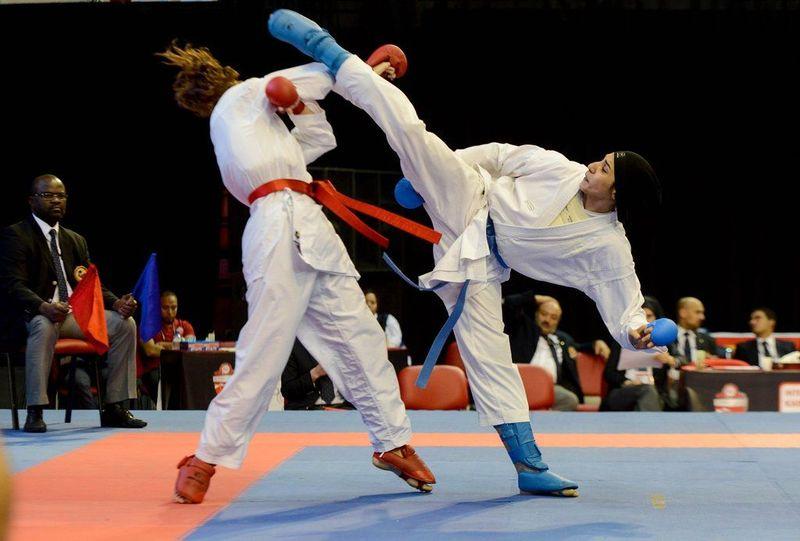 Te apuntas a un torneo de artes marciales ¿qué táctica vas a llevar a cabo?