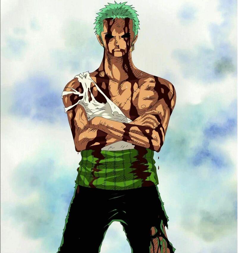A parte de Zoro, ¿qué otro Mugiwara se hubiera sacrificado al dolor de Luffy?