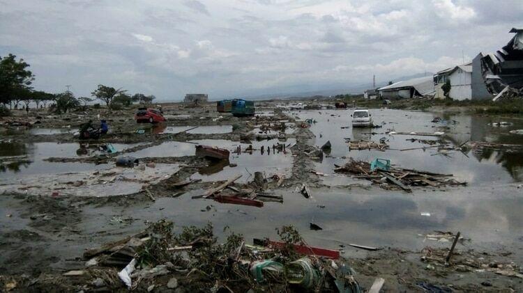 El terremoto ocurre, todo es un auténtico caos, además, se produce un gran escape químico que ha inundado Doñana, matándolo todo