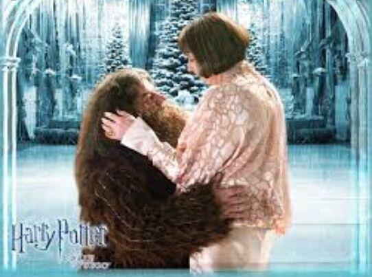 Volvemos con un verdadero o falso,¿es Hagrid un gigante?