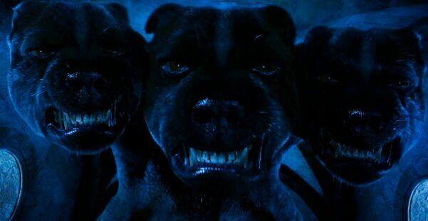 ¿Cómo se llama el perro de 3 cabezas que aparece en la primera película/el primer libro de HP?